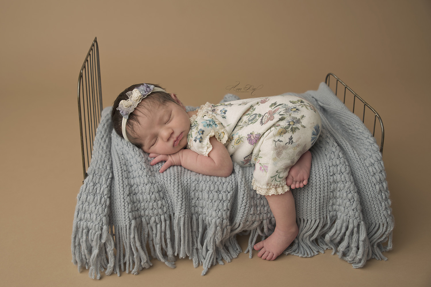 newborn portrait photographers st louis