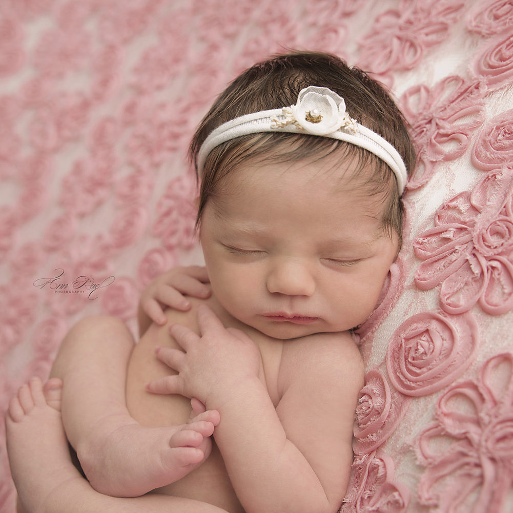 St. Louis photographer captures newborn sleeping on pink flowers